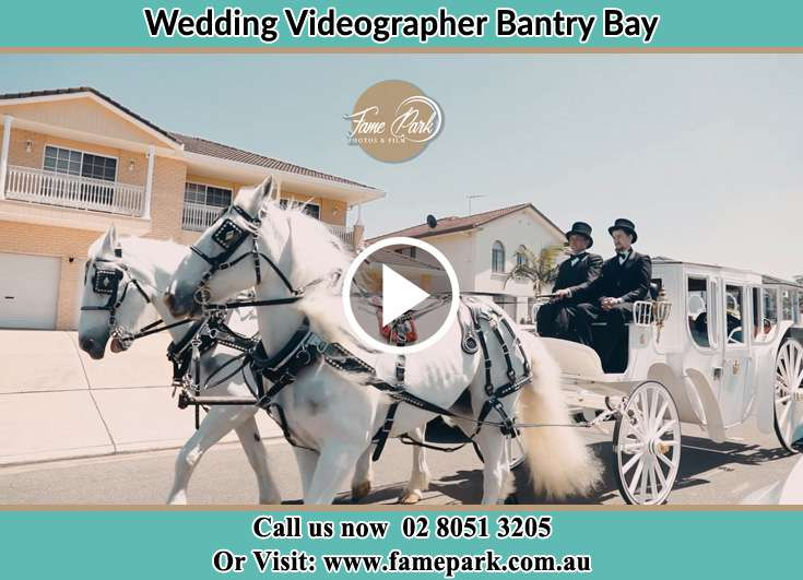 Wedding carriage Bantry Bay NSW 2087